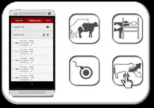 Gestion de l'élevage avec le logiciel T4C